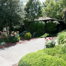 717 Center Street, Healdsburg, CA, 95448
