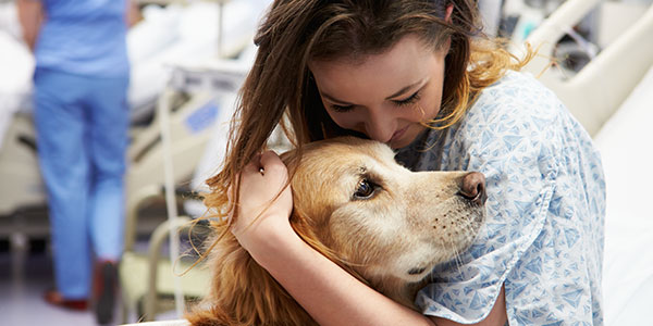 Hospital patient hugging therapy dog