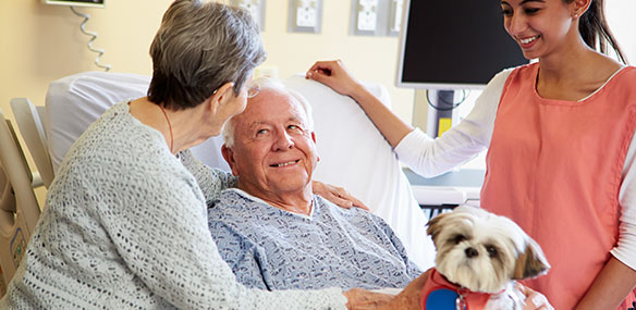 hospital volunteer bringing in therapy dog
