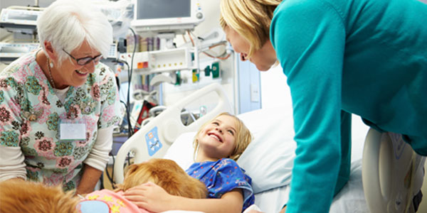 Therapy          dog consoling child in hospital